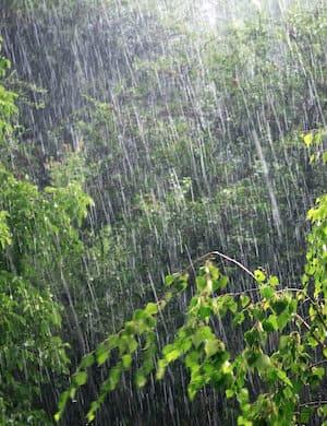 Шум дождя для сна слушать онлайн